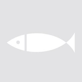 Ventresca de tonyina bluefin