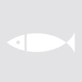 Bacallà esqueixat dessalat